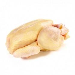 Petite Poularde 120 Jours 2,450kg +/-150g