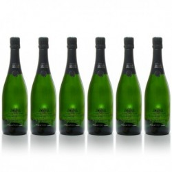 Carton 6 Bouteilles Champagne Xavier Loriot Aoc Champagne Brut 6x75cl