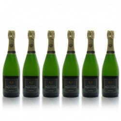 Carton 6 Bouteilles Champagne Philippe Fontaine Aoc Champagne Brut 6x75cl