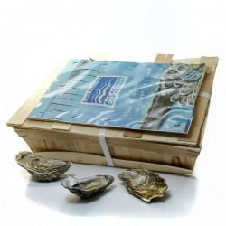 Bourriche de 4 douzaines d'Huitres Arcachon-Cap Ferret Calibre 2